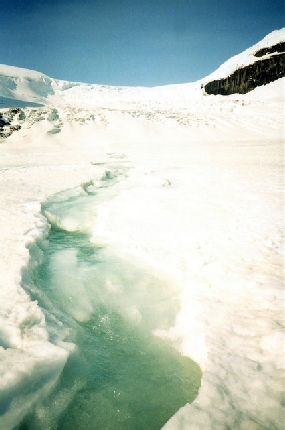 2002-06-12 3 Stream flowing on the Athabasca Glacier, Icefilelds Parkway, Alberta